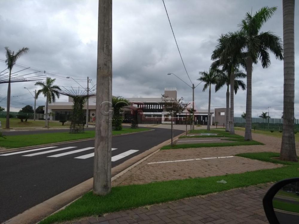 Comprar Terreno / Condomínio em Araçatuba apenas R$ 280.000,00 - Foto 6