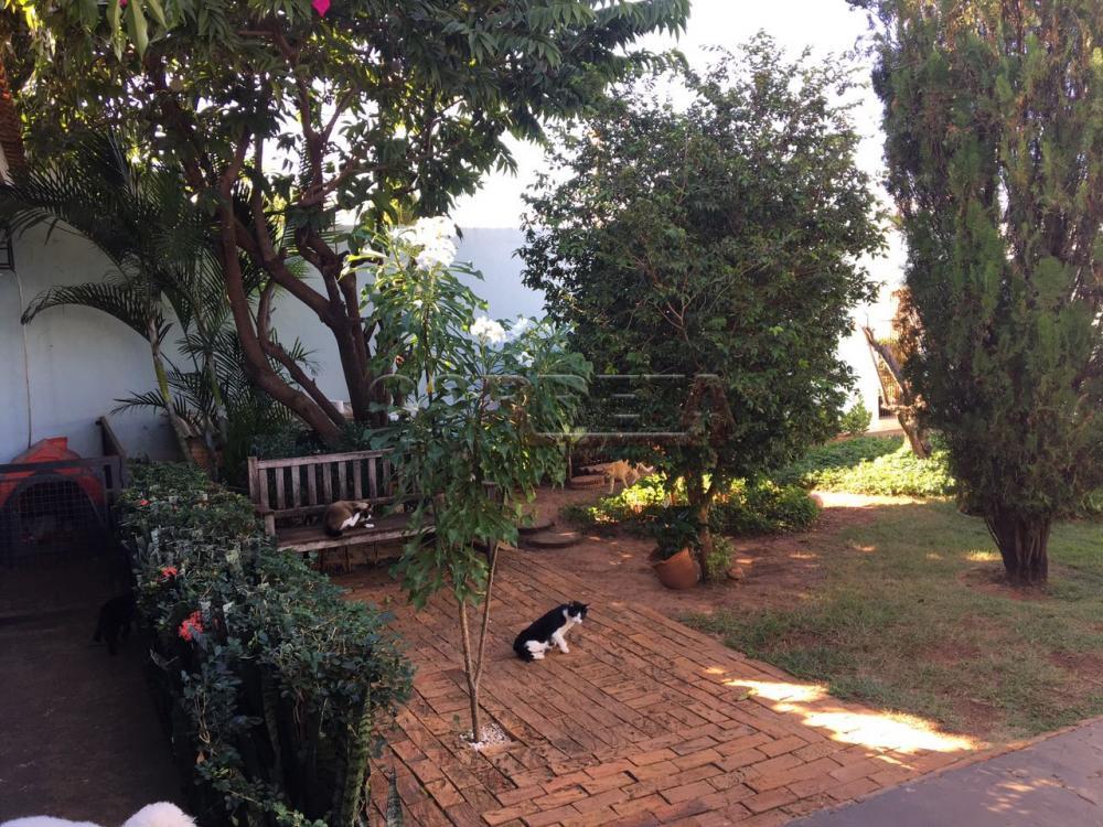 Aracatuba casa Venda R$420.000,00 2 Dormitorios 2 Vagas Area do terreno 330.00m2 Area construida 140.00m2