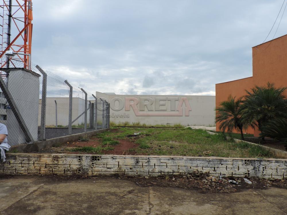Terreno com 0 dormitórios para alugar no Dona Amélia em Araçatuba/SP