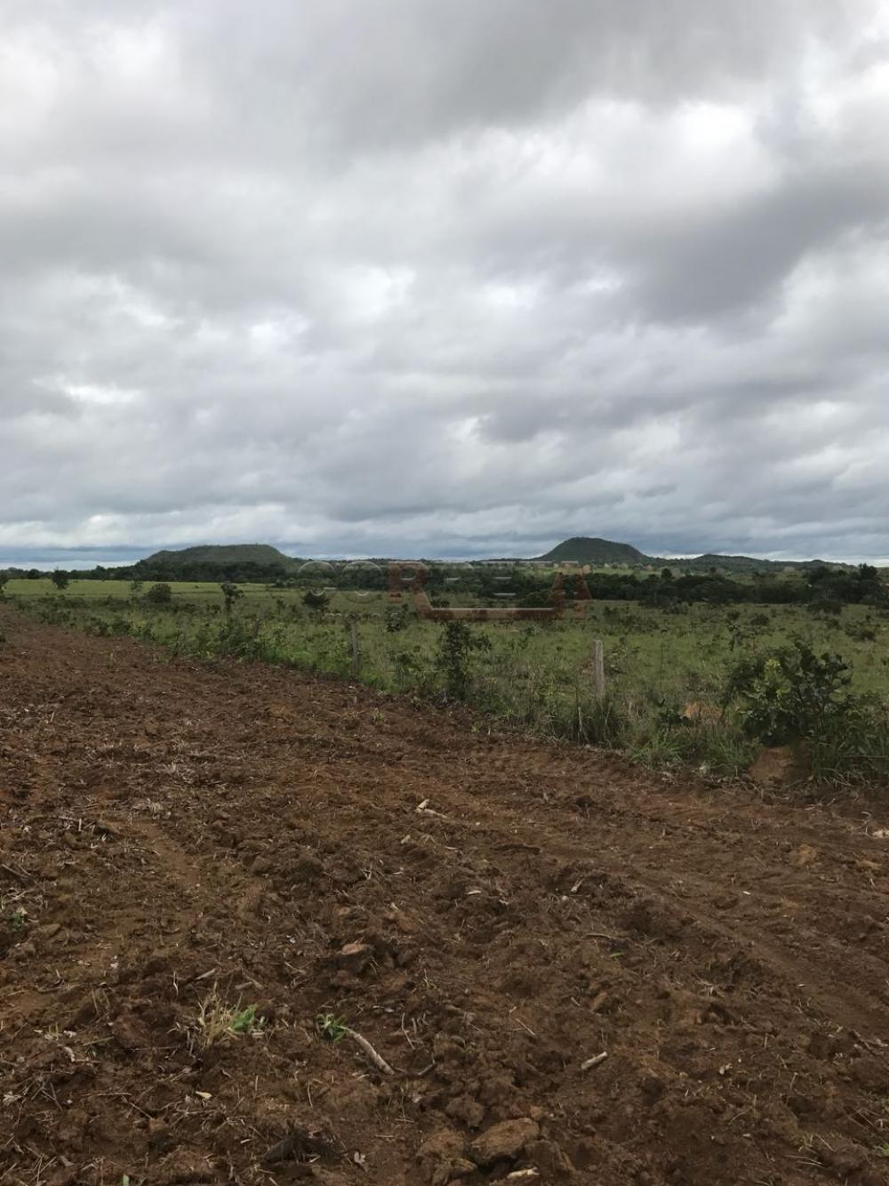 Comprar Rural / Fazenda em Rondonópolis - Foto 3