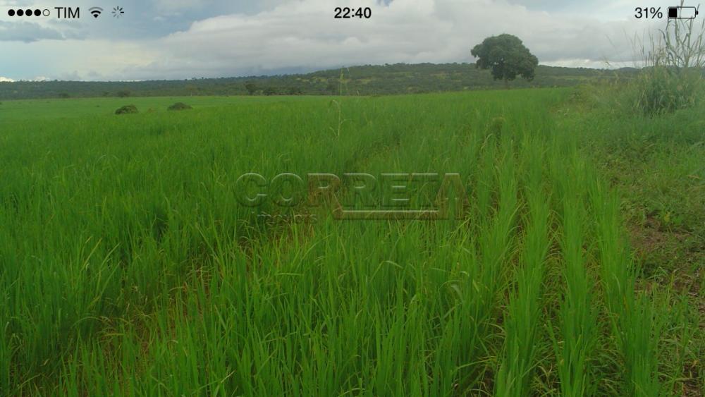 Comprar Rural / Fazenda em Rondonópolis - Foto 1