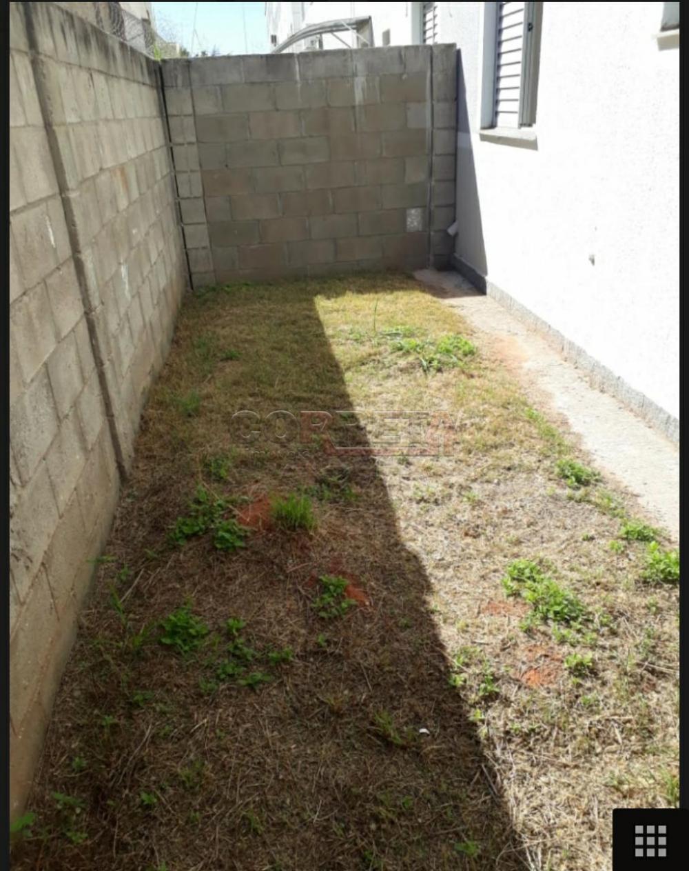 Alugar Apartamento / Padrão em Araçatuba R$ 550,00 - Foto 3