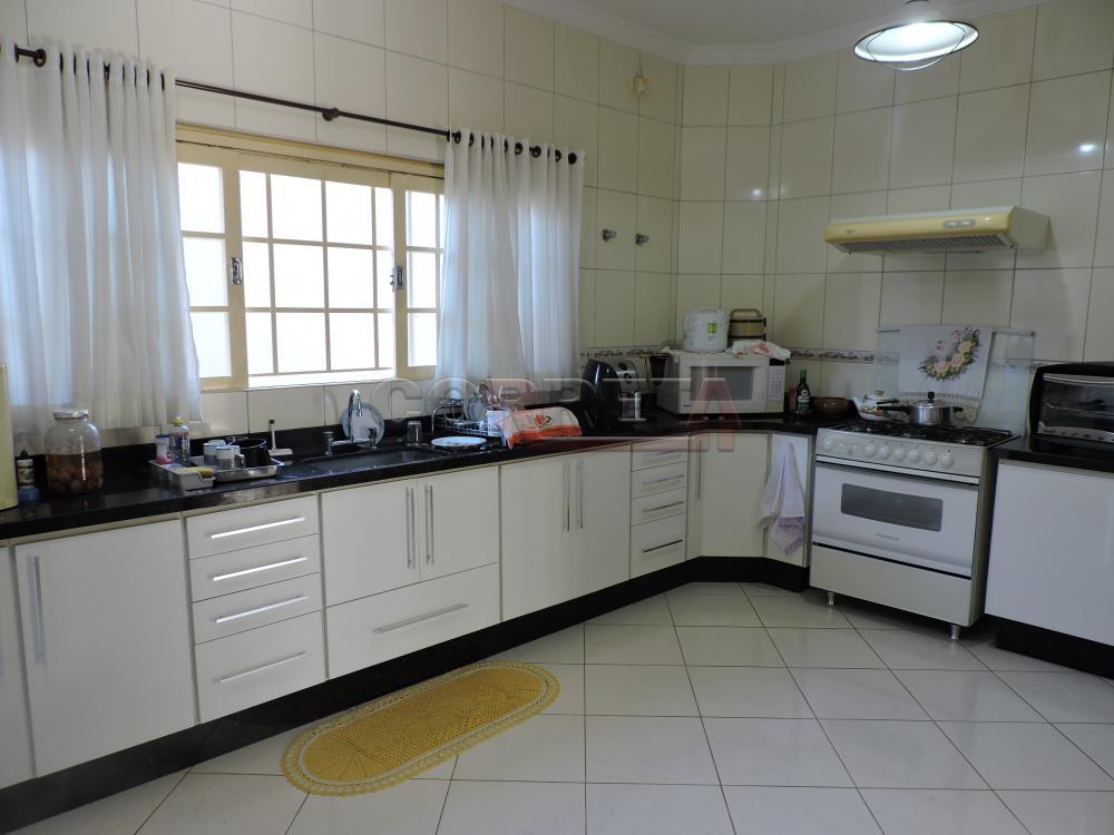 Alugar Casa / Sobrado em Araçatuba apenas R$ 3.000,00 - Foto 18