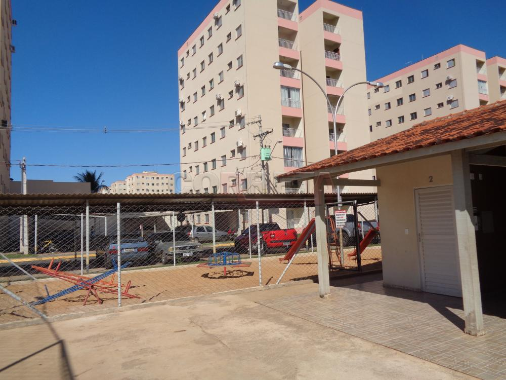 Alugar Apartamento / Padrão em Araçatuba apenas R$ 600,00 - Foto 14
