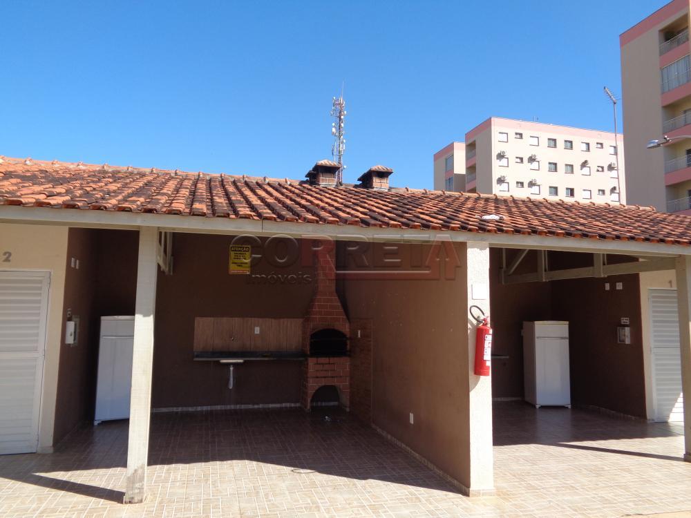 Alugar Apartamento / Padrão em Araçatuba apenas R$ 700,00 - Foto 15