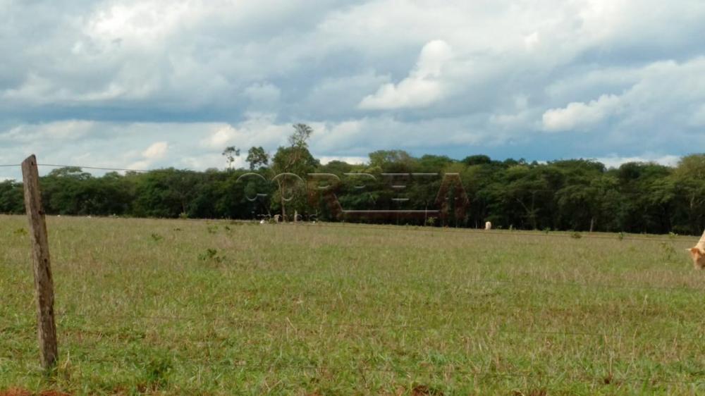 Comprar Rural / Fazenda em Água Clara - Foto 5