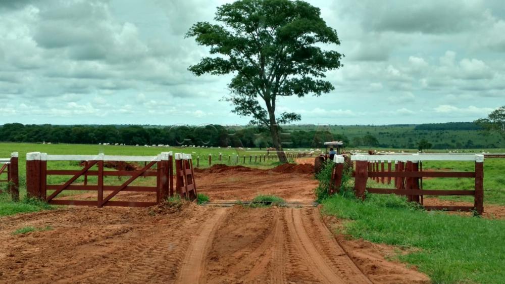 Comprar Rural / Fazenda em Água Clara - Foto 3