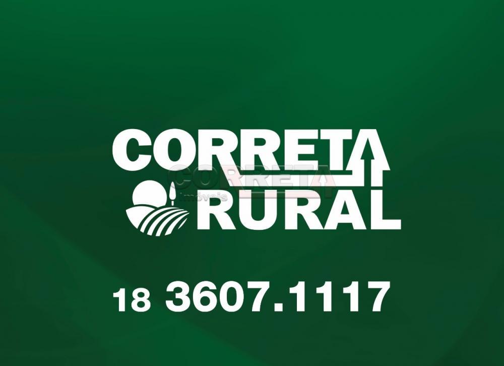 Comprar Rural / Fazenda em Água Clara - Foto 12