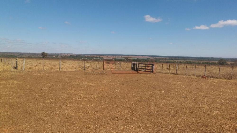 Comprar Rural / Fazenda em Selvíria - Foto 6