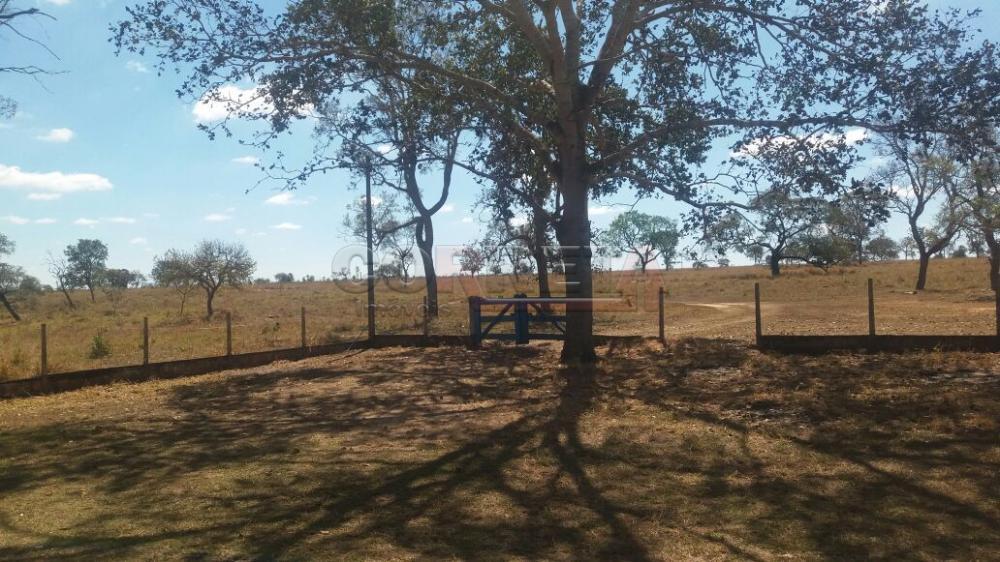 Comprar Rural / Fazenda em Selvíria - Foto 4