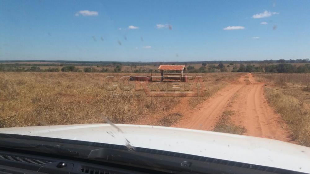 Comprar Rural / Fazenda em Selvíria - Foto 11