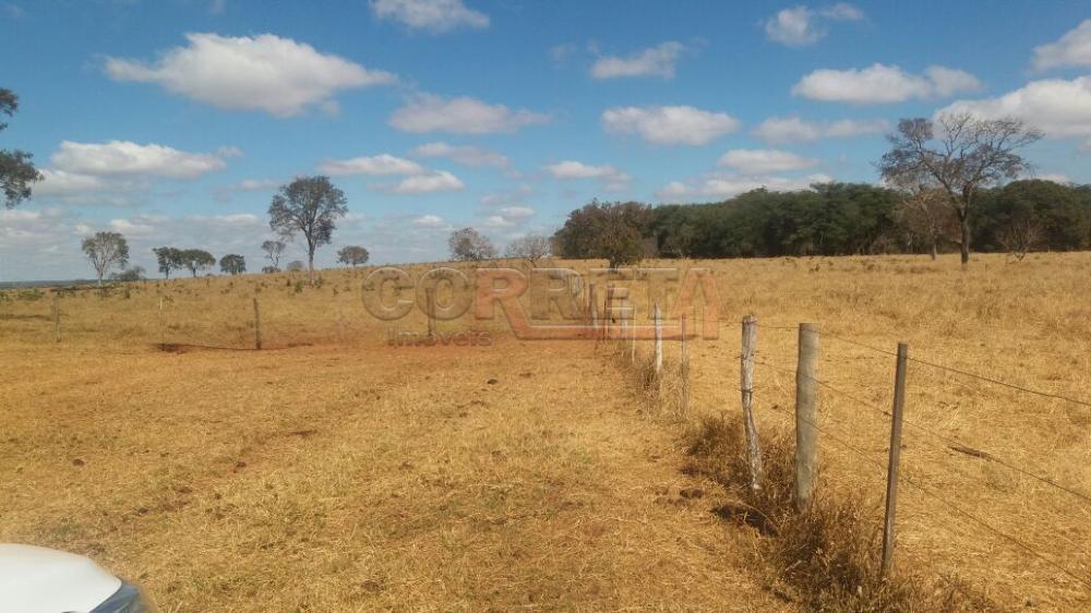 Comprar Rural / Fazenda em Selvíria - Foto 14