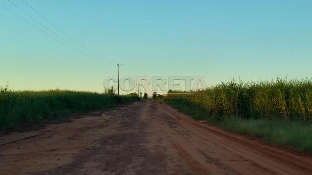Comprar Rural / Fazenda em Ivinhema - Foto 9
