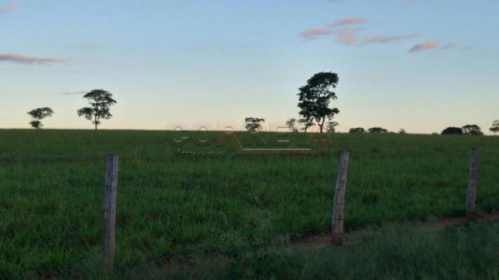 Comprar Rural / Fazenda em Ivinhema - Foto 6