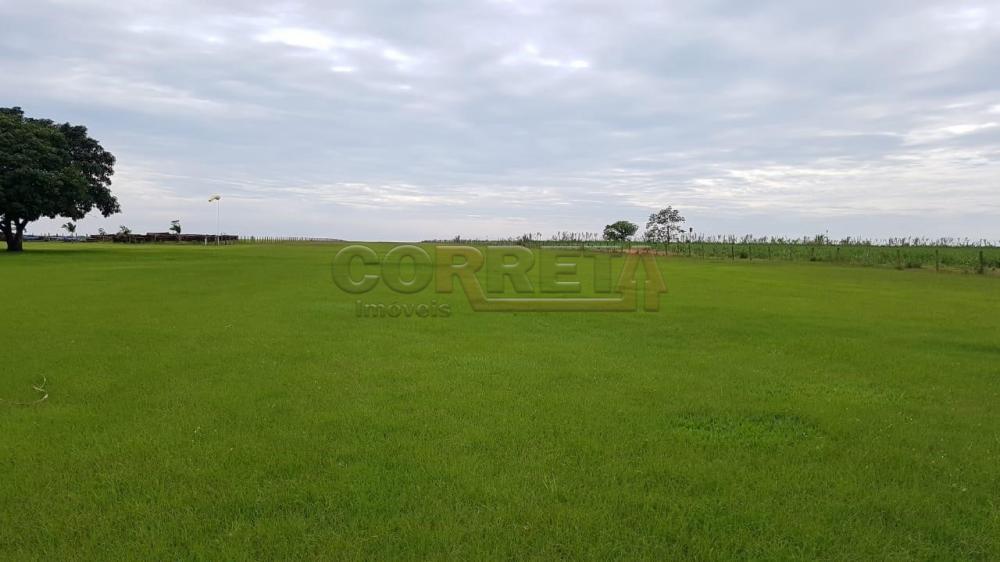 Comprar Rural / Fazenda em Ivinhema - Foto 3