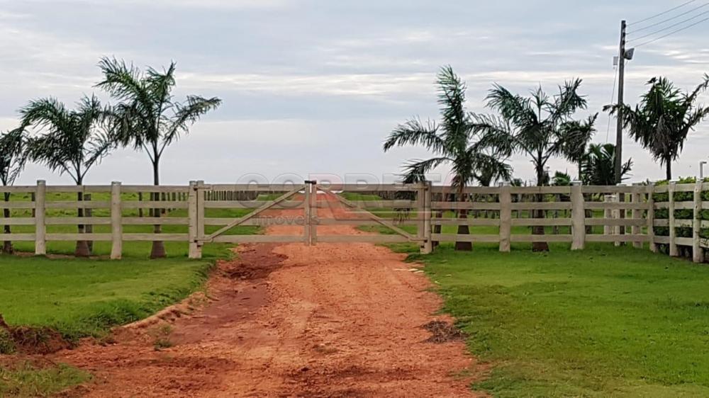 Comprar Rural / Fazenda em Ivinhema - Foto 7