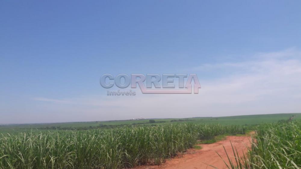 Comprar Rural / Fazenda em Araçatuba - Foto 2