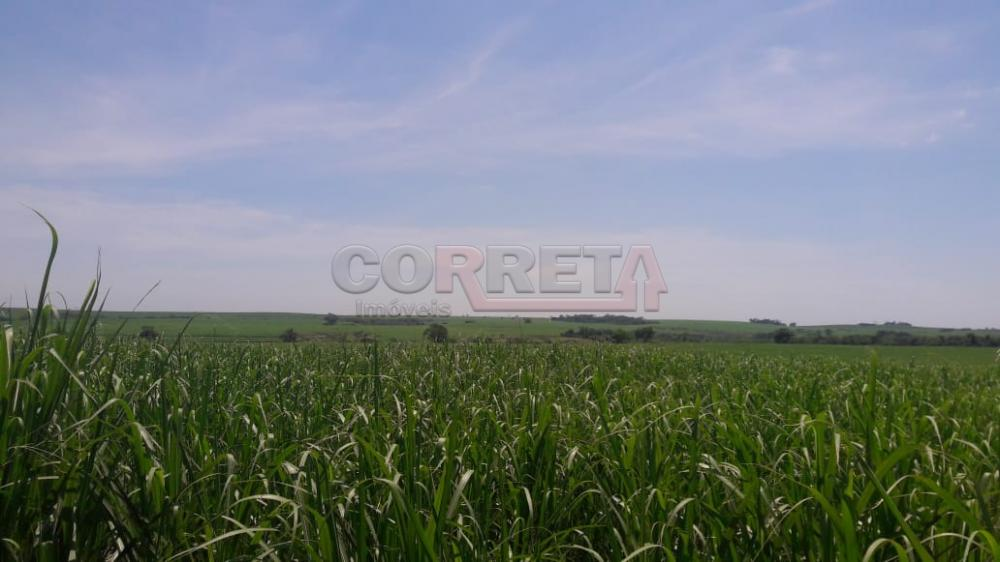 Comprar Rural / Fazenda em Araçatuba - Foto 4