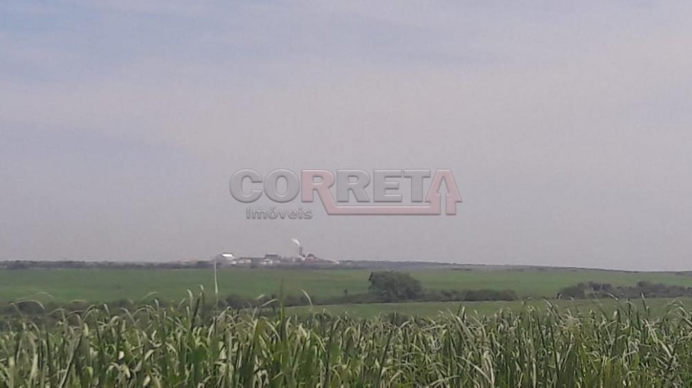 Comprar Rural / Fazenda em Araçatuba - Foto 1