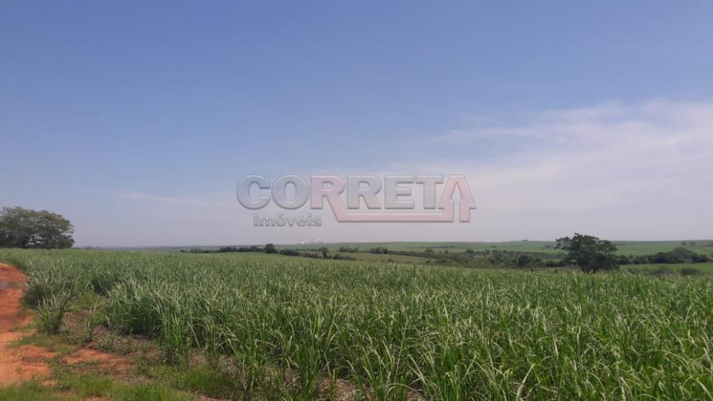 Comprar Rural / Fazenda em Araçatuba - Foto 9