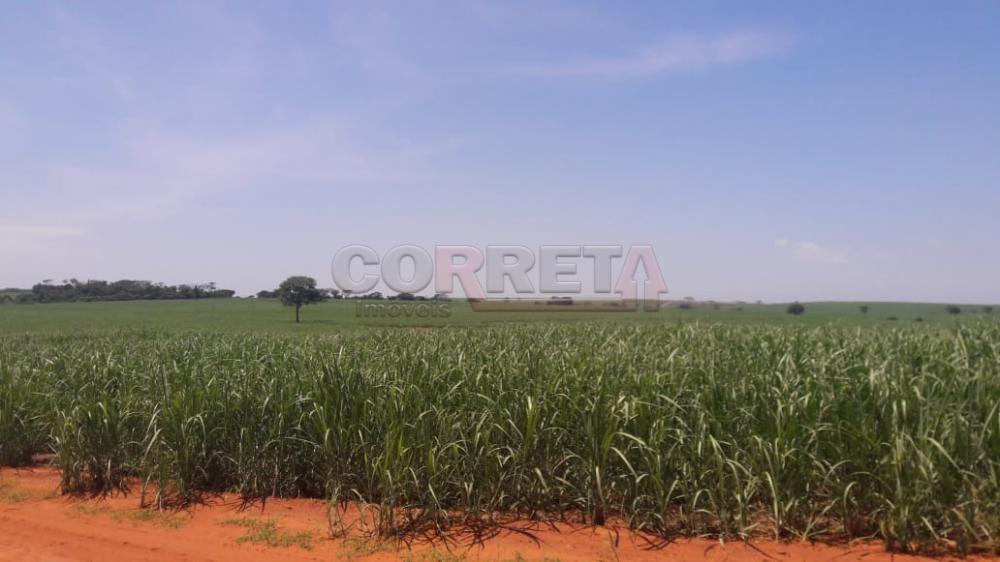 Comprar Rural / Fazenda em Araçatuba - Foto 12