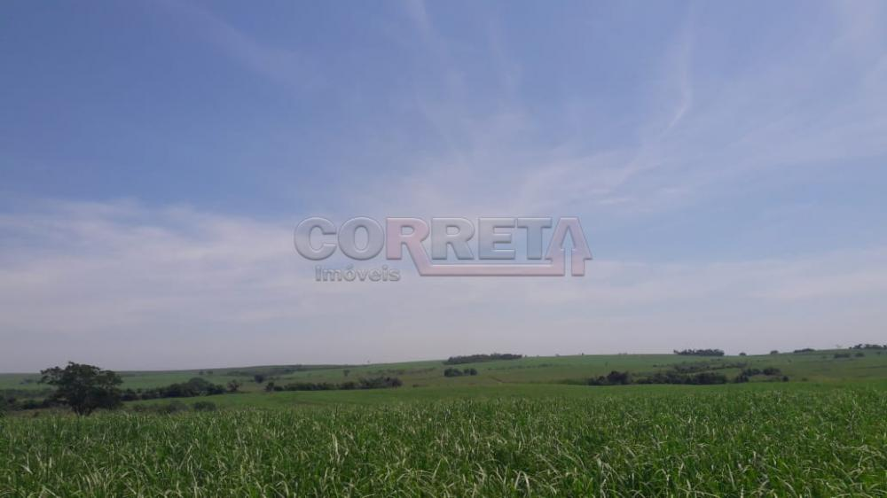 Comprar Rural / Fazenda em Araçatuba - Foto 13