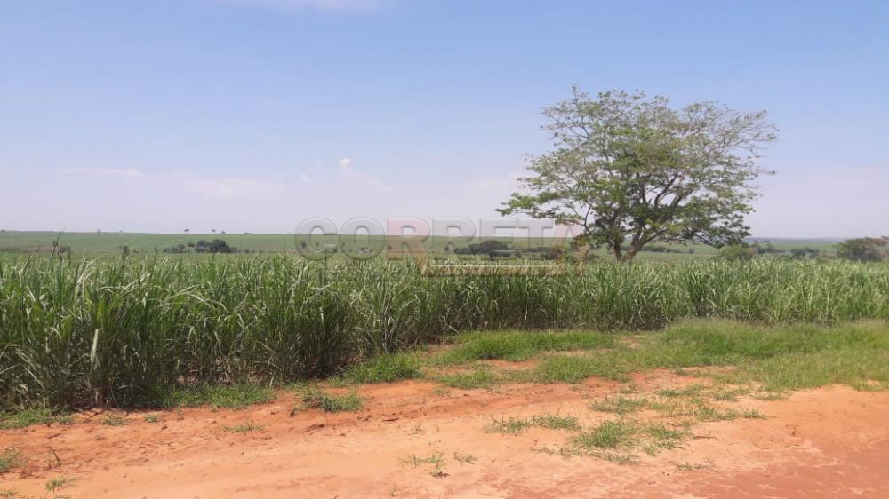 Comprar Rural / Fazenda em Araçatuba - Foto 14