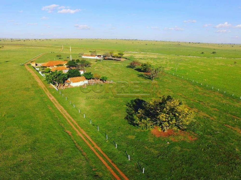 Comprar Rural / Fazenda em Presidente Prudente - Foto 2