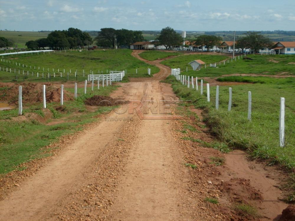 Comprar Rural / Fazenda em Assis - Foto 2