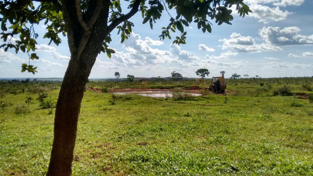Comprar Rural / Fazenda em Três Lagoas - Foto 1