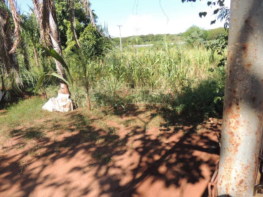 Comprar Terreno / Padrão em Buritama apenas R$ 100.000,00 - Foto 4
