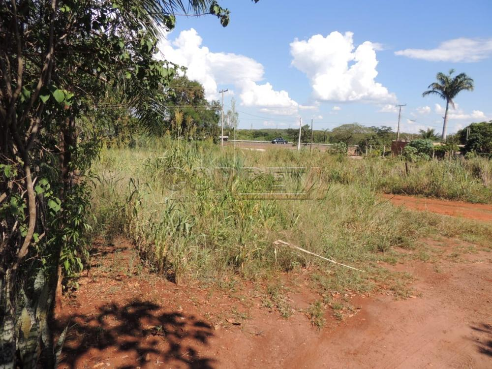 Comprar Terreno / Padrão em Buritama apenas R$ 100.000,00 - Foto 5