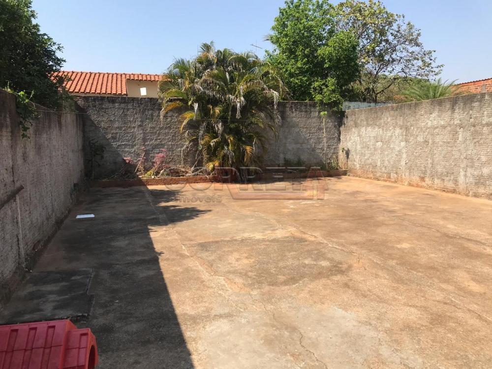 Comprar Casa / Residencial em Araçatuba apenas R$ 180.000,00 - Foto 7