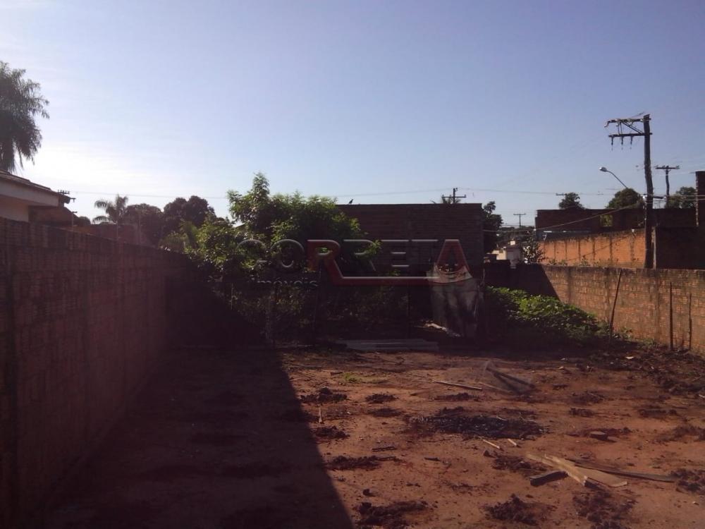 Comprar Terreno / Padrão em Araçatuba apenas R$ 80.000,00 - Foto 1