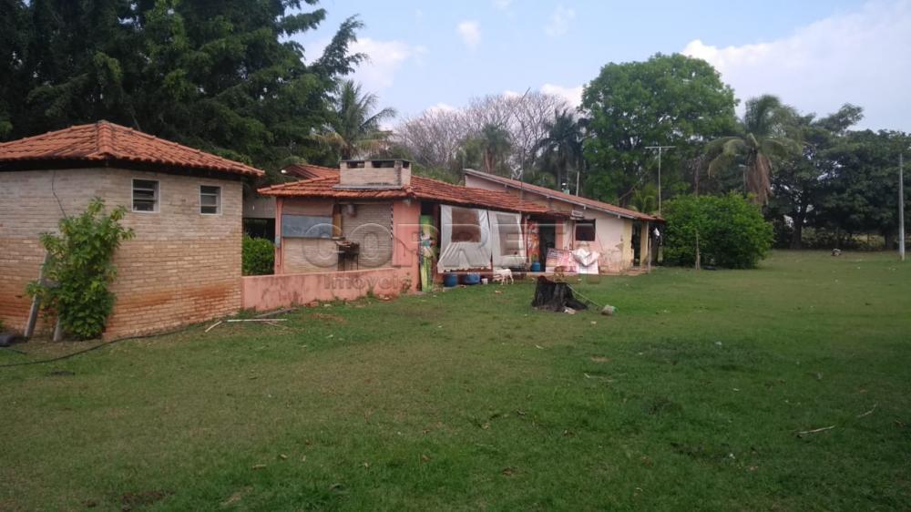 Comprar Rural / Chácara em Araçatuba apenas R$ 750.000,00 - Foto 16