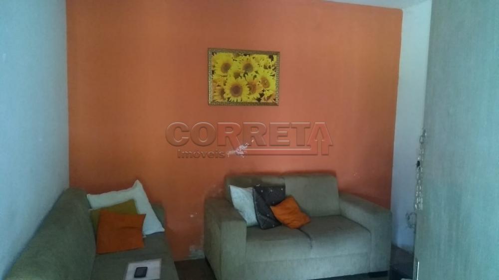 Comprar Rural / Chácara em Araçatuba apenas R$ 750.000,00 - Foto 3