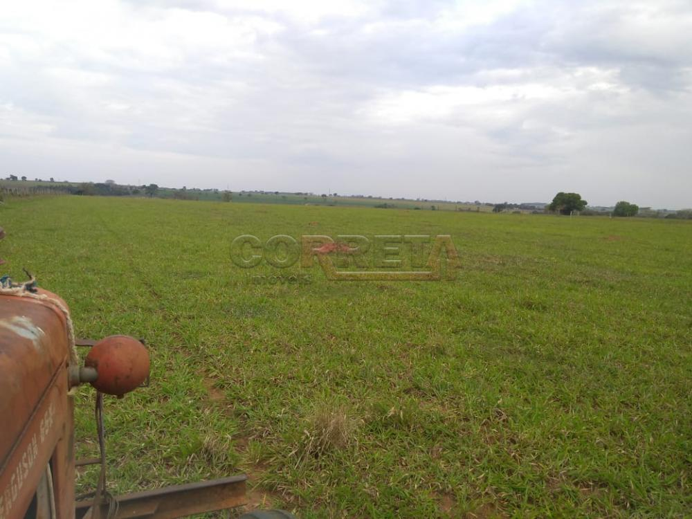 Comprar Rural / Sítio em Coroados apenas R$ 930.000,00 - Foto 25