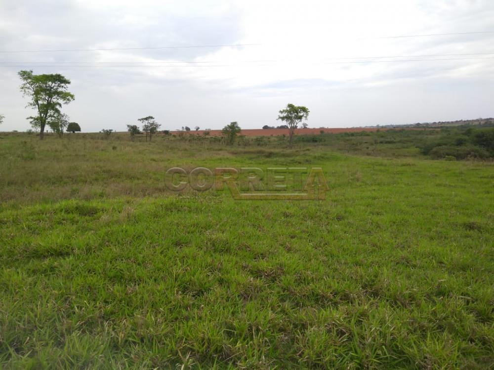 Comprar Rural / Sítio em Coroados apenas R$ 930.000,00 - Foto 29