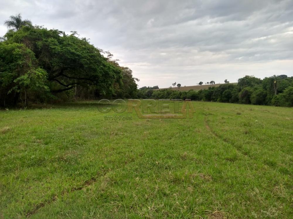 Comprar Rural / Sítio em Coroados apenas R$ 930.000,00 - Foto 27