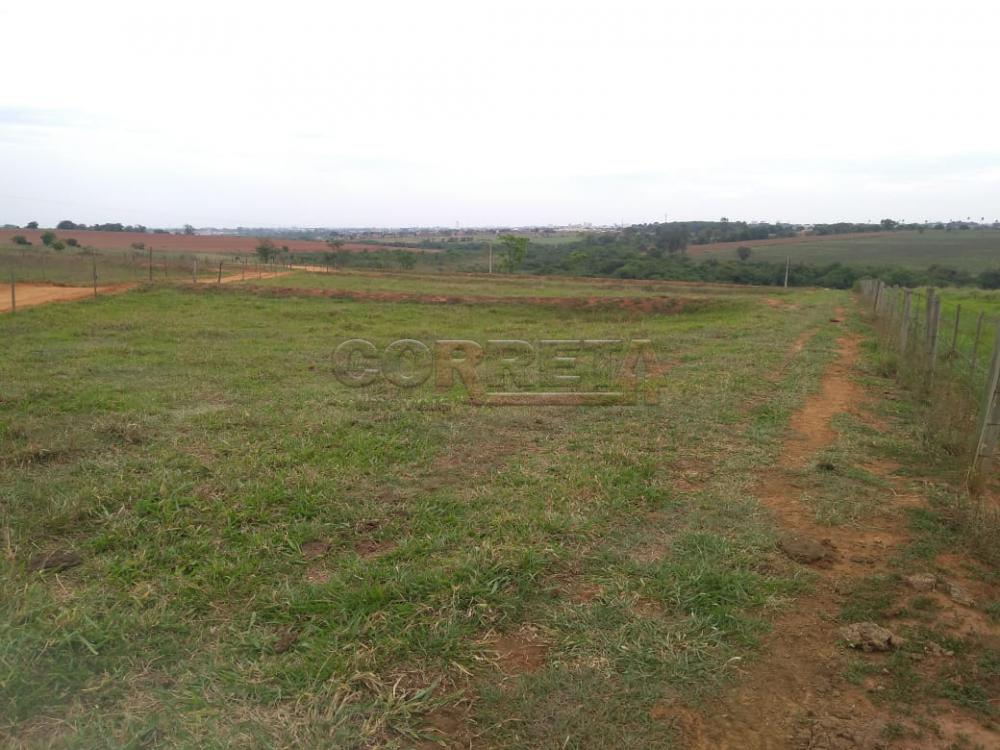 Comprar Rural / Sítio em Coroados apenas R$ 930.000,00 - Foto 24