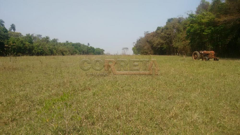 Comprar Rural / Sítio em Coroados apenas R$ 930.000,00 - Foto 28