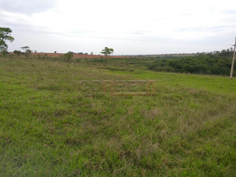 Comprar Rural / Sítio em Coroados apenas R$ 930.000,00 - Foto 32