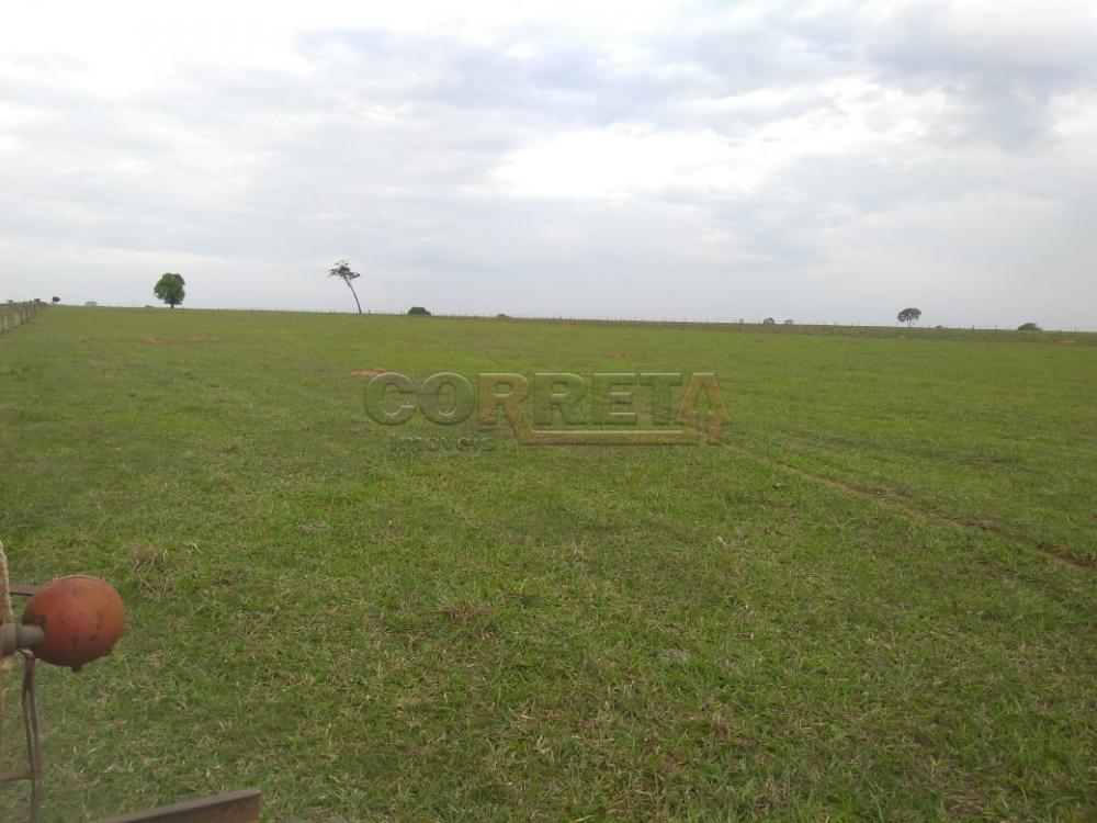 Comprar Rural / Sítio em Coroados apenas R$ 930.000,00 - Foto 34