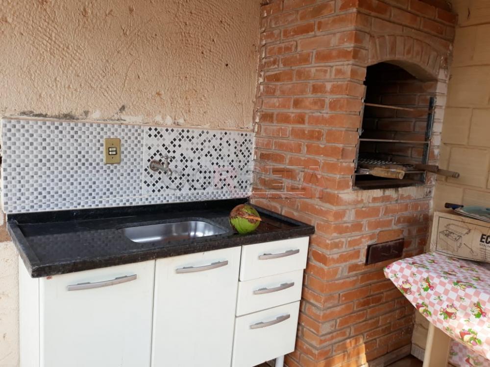 Alugar Casa / Residencial em Araçatuba apenas R$ 700,00 - Foto 1