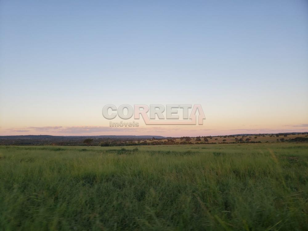 Comprar Rural / Fazenda em Cassilândia - Foto 6