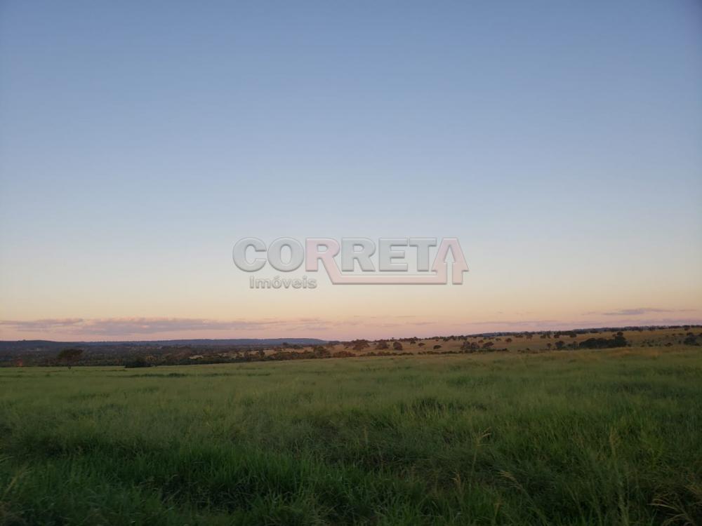 Comprar Rural / Fazenda em Cassilândia - Foto 7
