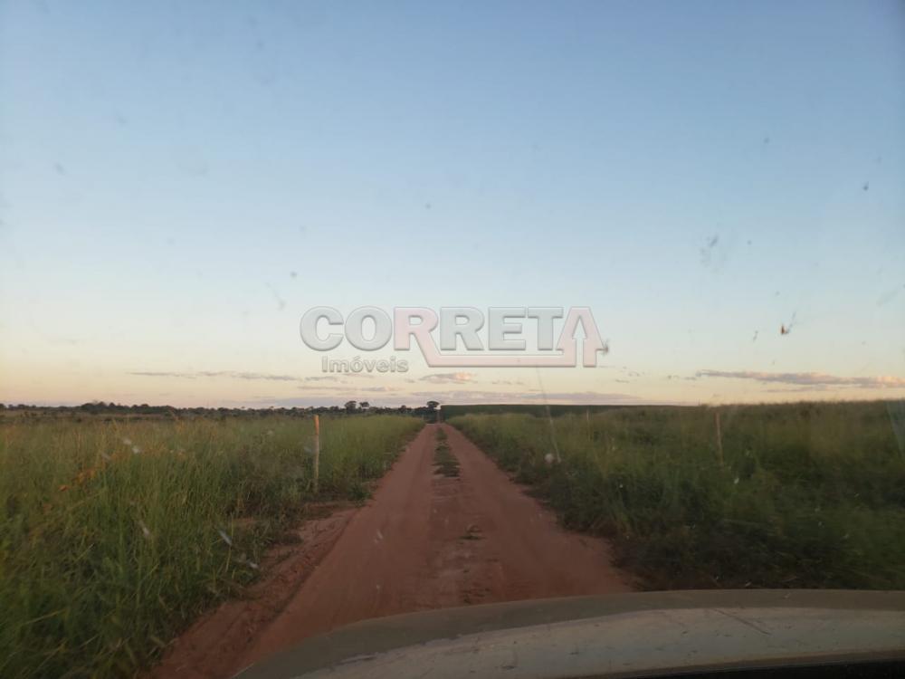 Comprar Rural / Fazenda em Cassilândia - Foto 8