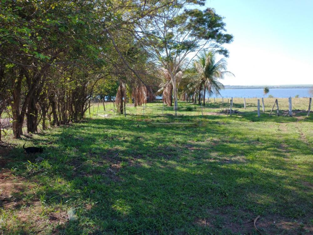 Comprar Rural / Rancho em Santo Antônio do Aracanguá apenas R$ 1.470.000,00 - Foto 3