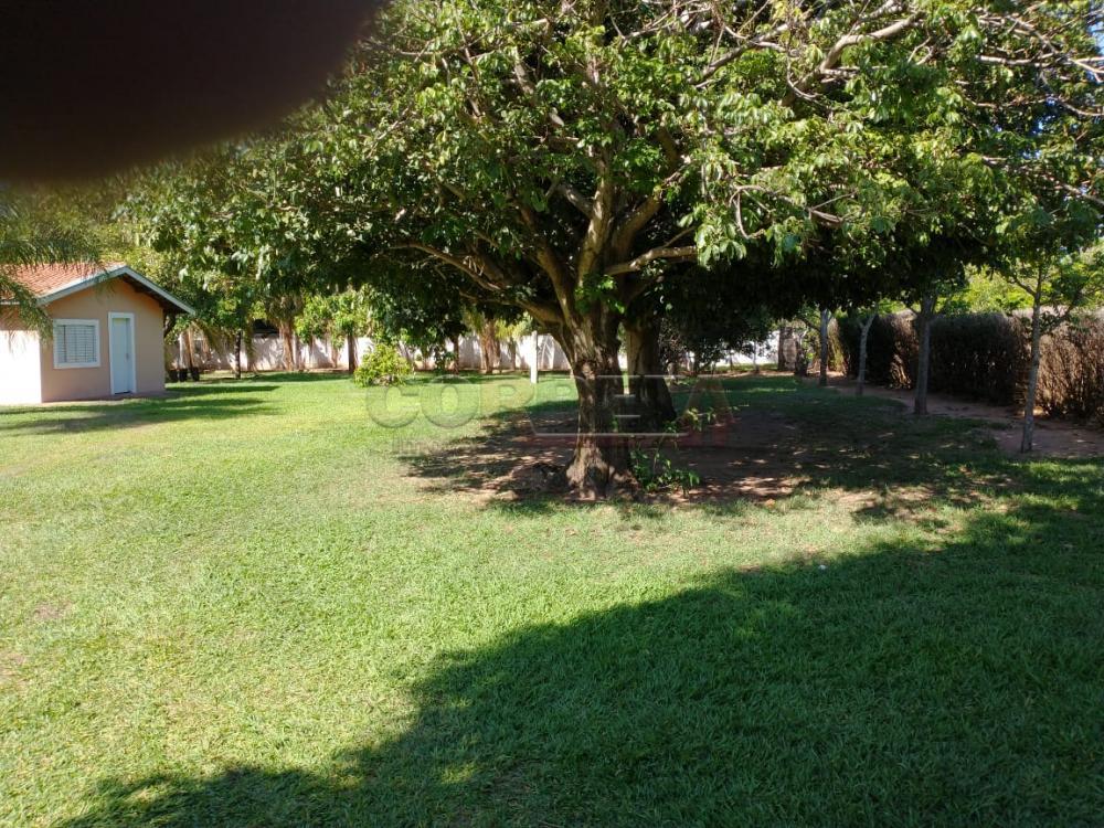 Comprar Rural / Rancho em Santo Antônio do Aracanguá apenas R$ 1.470.000,00 - Foto 6