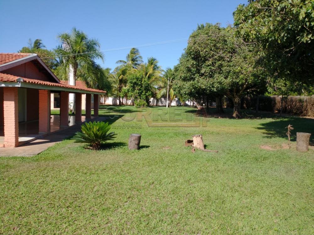 Comprar Rural / Rancho em Santo Antônio do Aracanguá apenas R$ 1.470.000,00 - Foto 8
